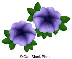 Purple petunias Illustrations and Stock Art. 102 Purple petunias.