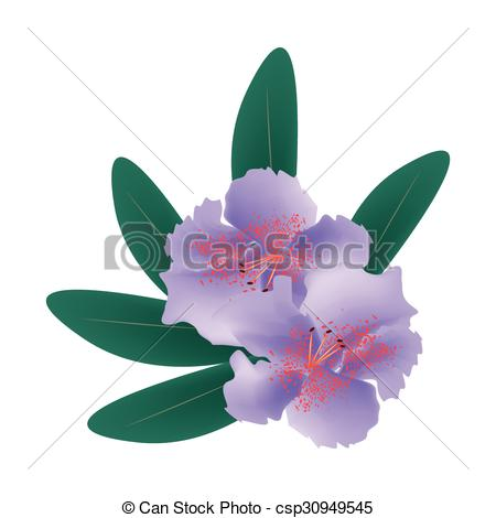 EPS Vector of Purple Rhododendron with Green Leaves on White.