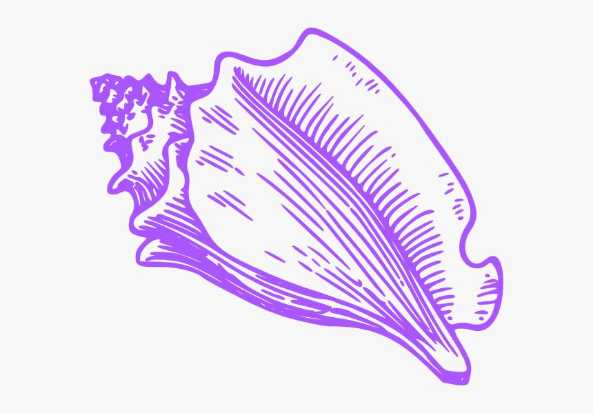Shells Clipart Purple Clipart.