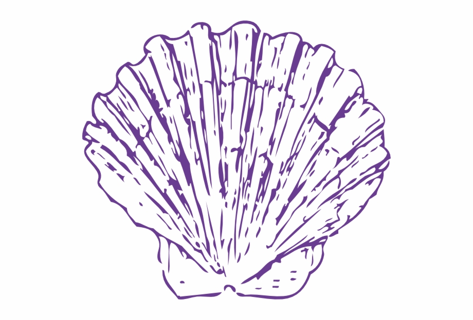 Blue Seashell Png Free PNG Images & Clipart Download.