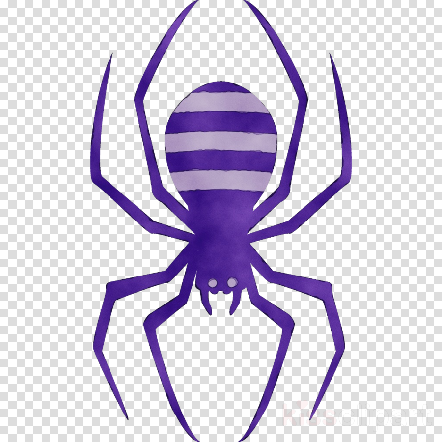 violet purple arachnid symmetry spider clipart.