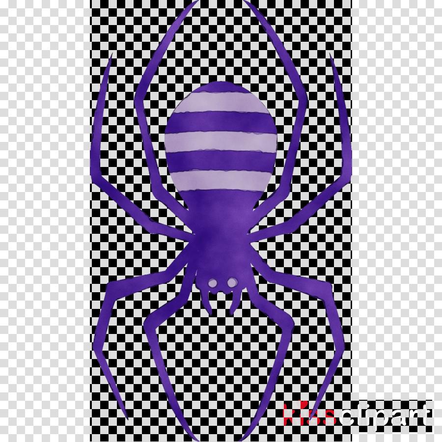 violet purple arachnid symmetry spider clipart.