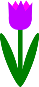 Totetude Purple Tulip Clip Art at Clker.com.