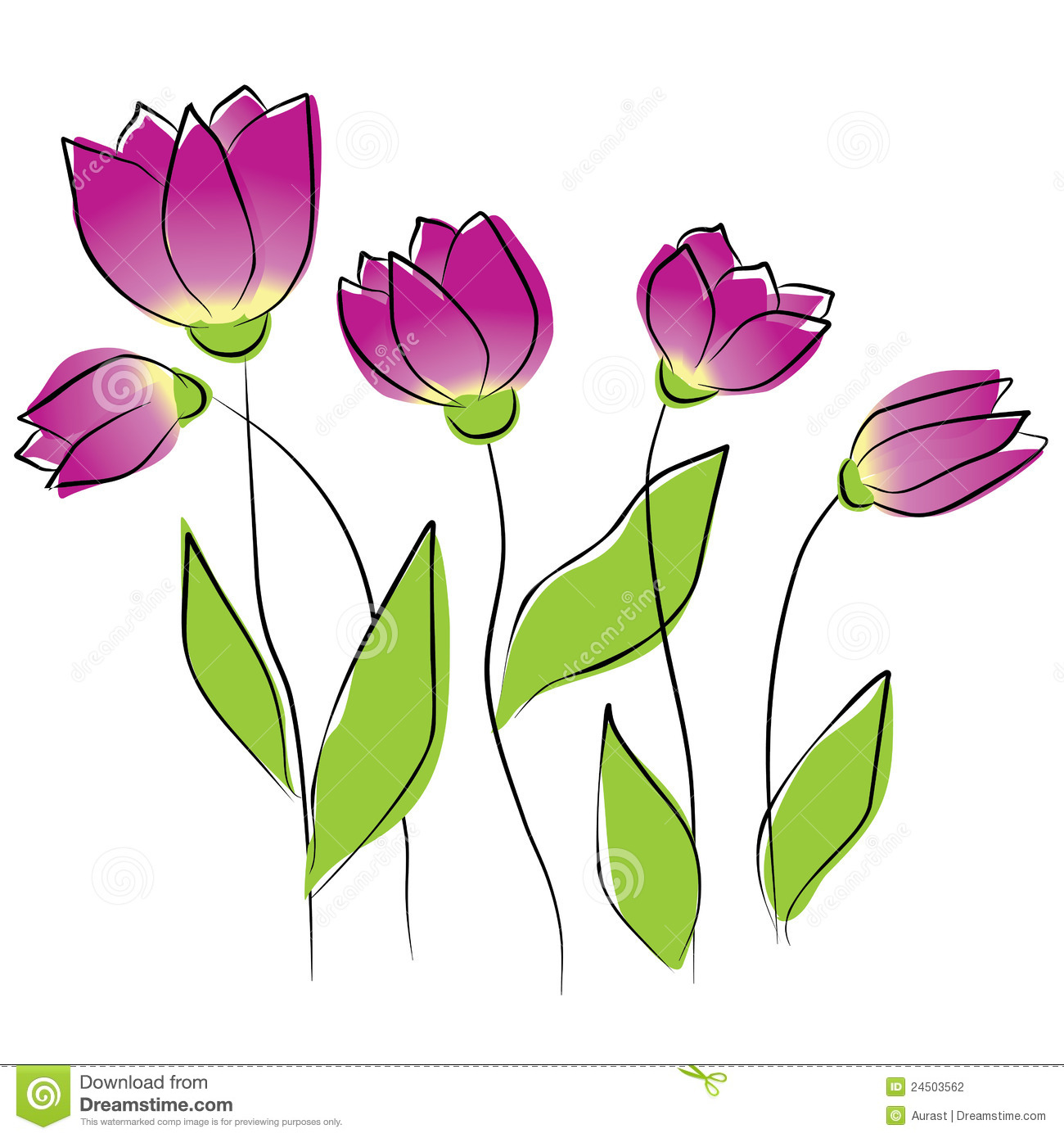 Purple Tulips Stock Illustrations.
