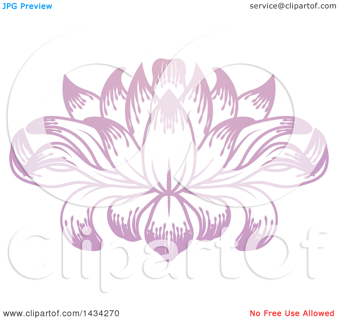 Clipart of a Beautiful Pink Purple Water Lily Lotus Flower.