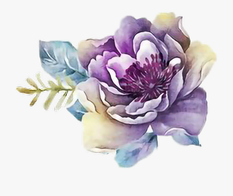 Flower Png Watercolor.