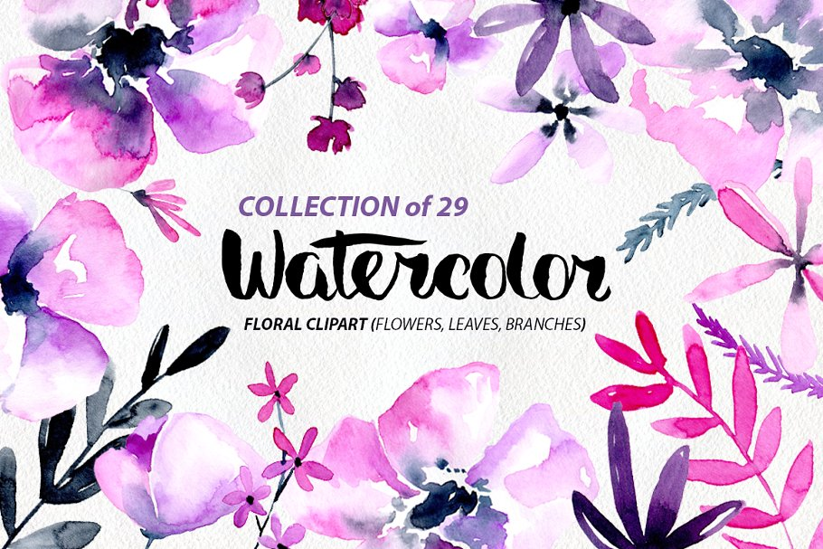 Purple & pink watercolor flowers png.