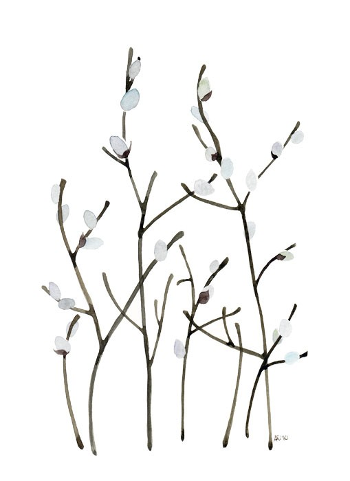 1000+ images about Pussy Willow Arrangements on Pinterest.
