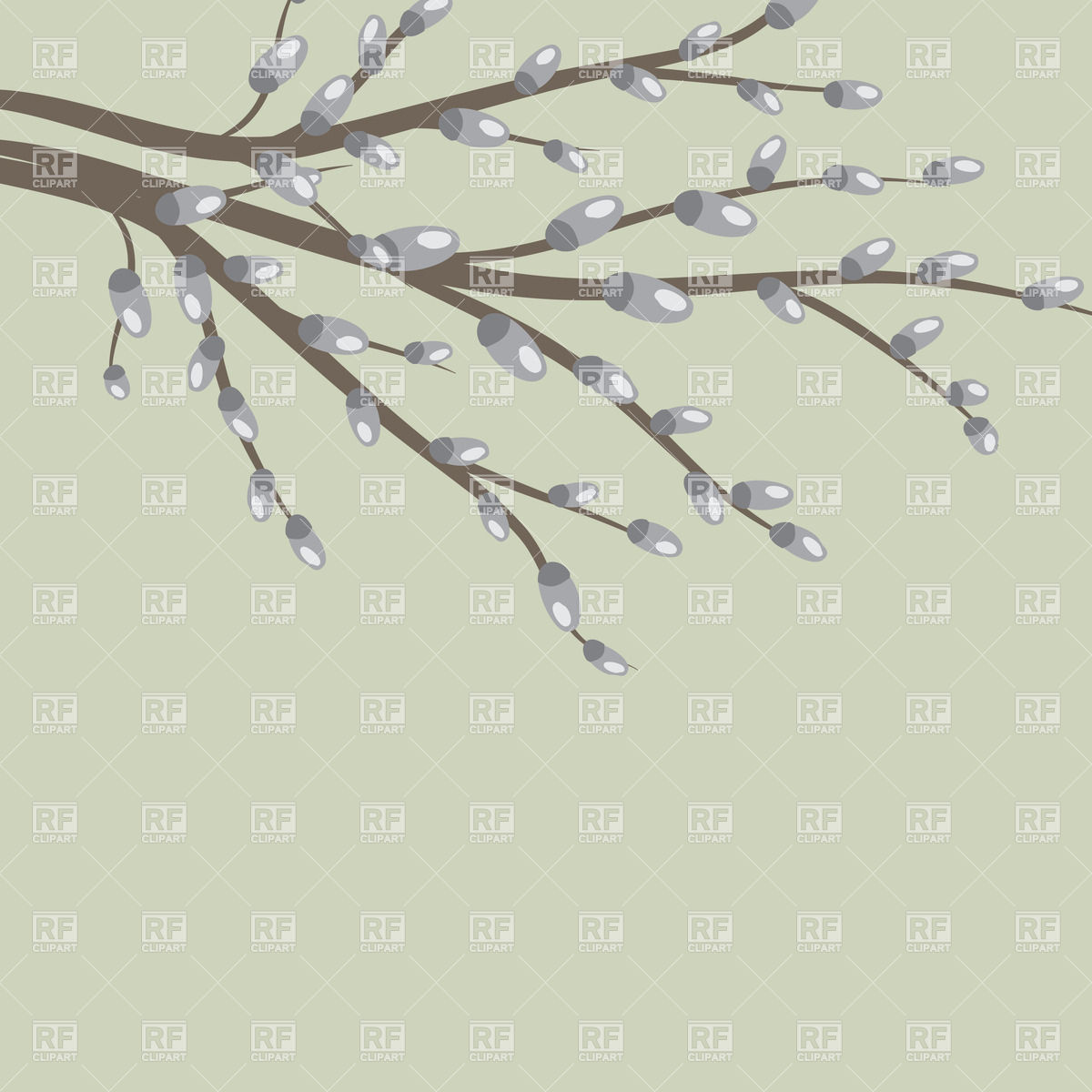 Branch of pussy willow Vector Image #21835.