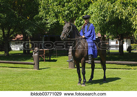 "Stock Photograph of ""Csikos on horseback, Tanyacsarda stud."
