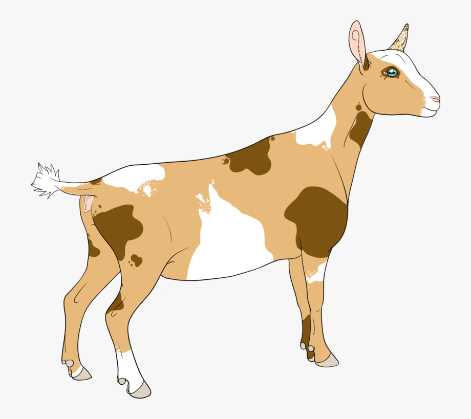 Goat Clipart Realistic.