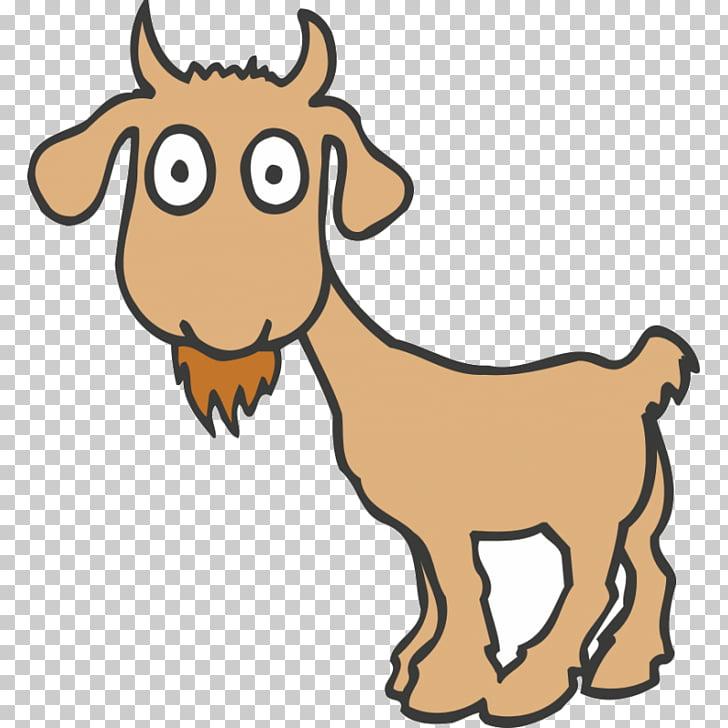 Boer goat Pygmy goat Anglo.
