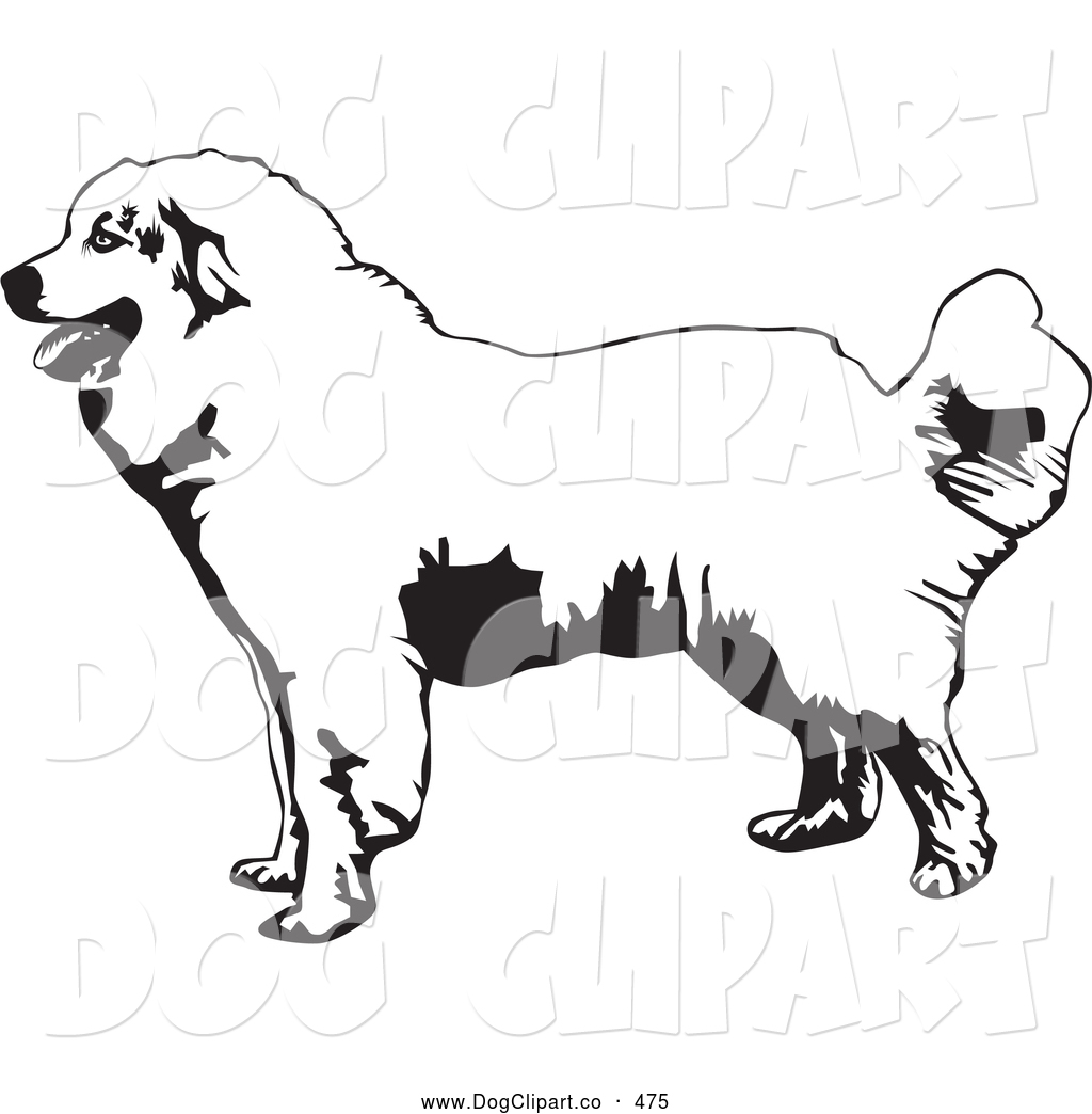 Great pyrenees clipart.