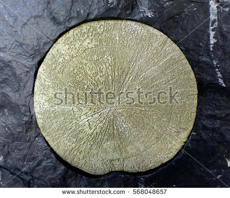 Iron Pyrite Stock Photos, Royalty.