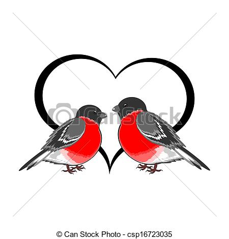 Vectors of A couple of cute bullfinches (pyrrhula) with a heart.