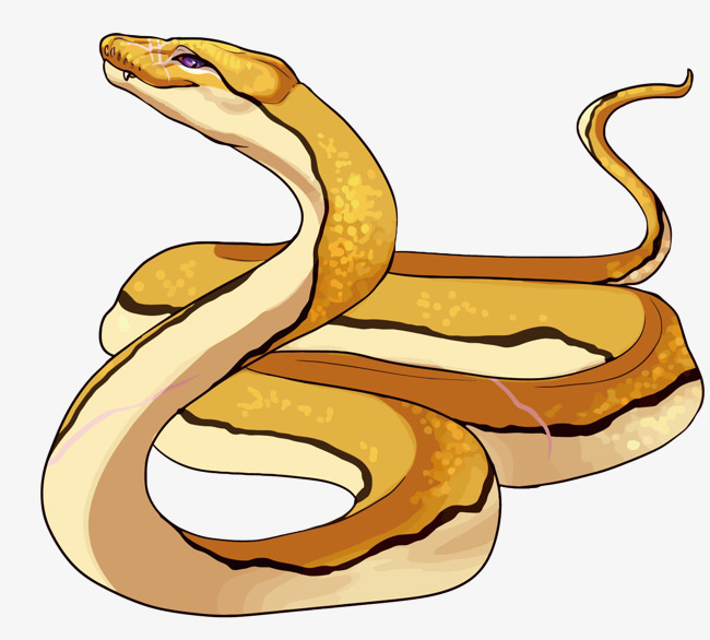 Snakes, Drawing, Graphics, Snake, Font, Pattern.