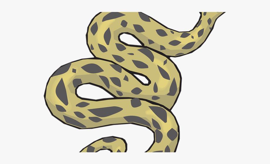 Anaconda Clipart Common.
