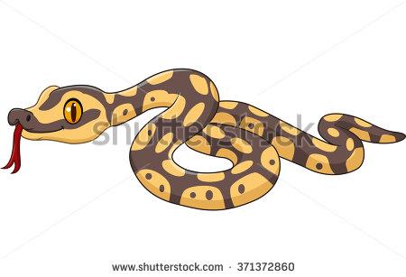 Pythonidae Stock Photos, Royalty.