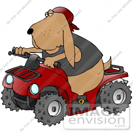 Showing post & media for Cartoon riding quads.