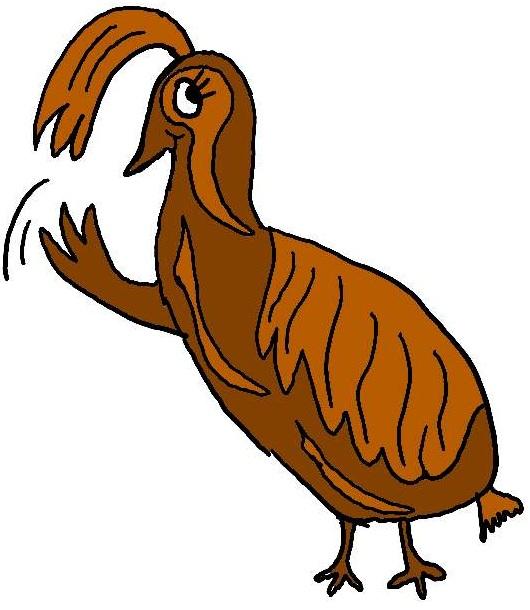 Bird Quail Clipart.