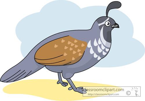 clipart of quail - photo #21
