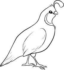 Free Quail Clipart Best Animal Clip Art ⋆ ClipartView.com.