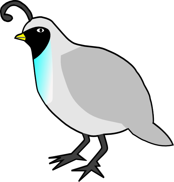 Black and White Quail Clipart.