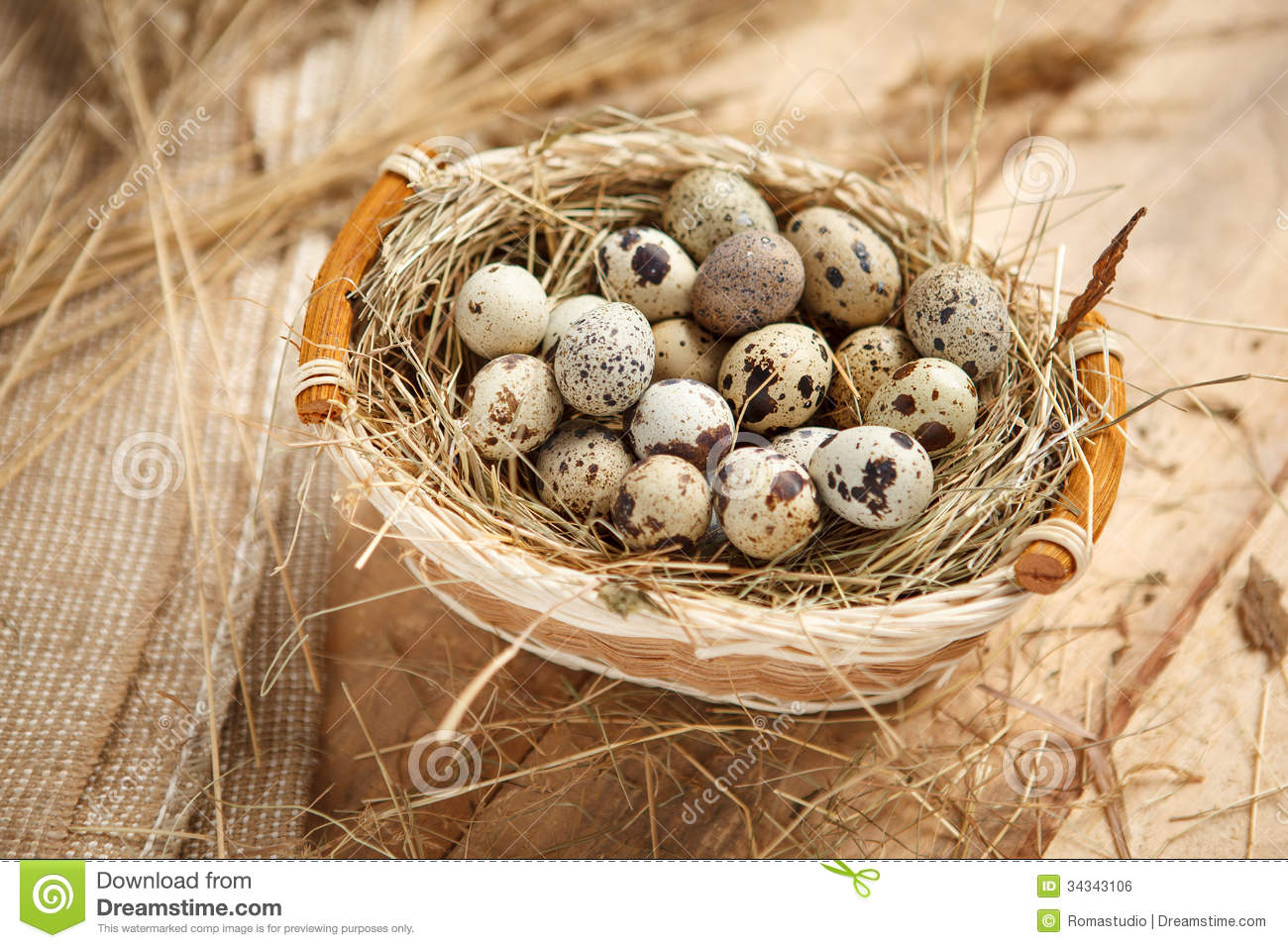 Raw Quail Eggs Royalty Free Stock Image.