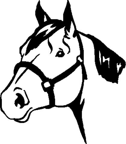 Quarter Horses Head Clipart.