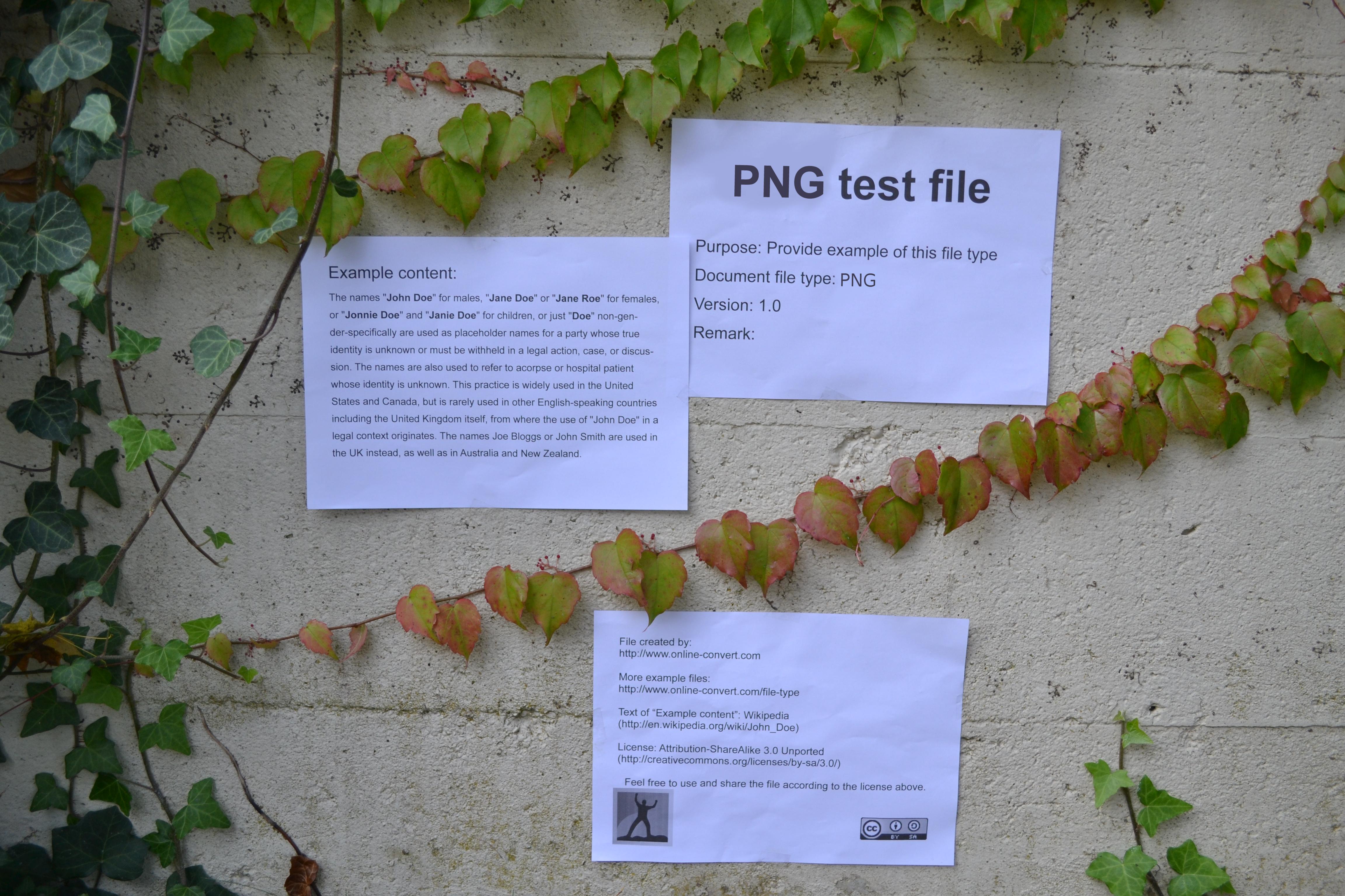 Información sobre la extensión de archivo PNG.