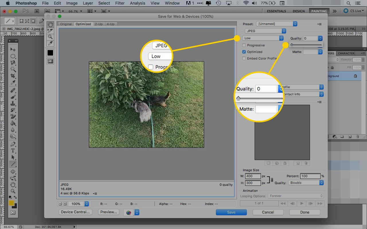 How to Use the Photoshop Save for Web Tool.