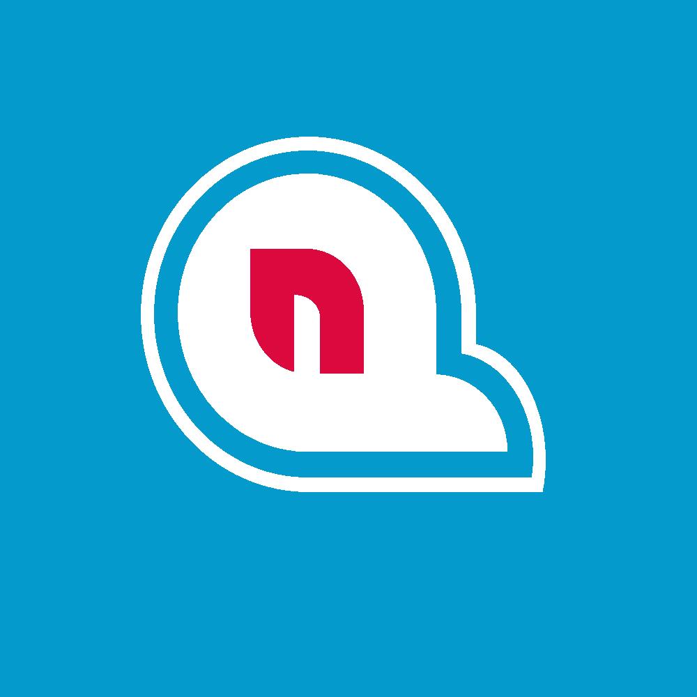 Quebec Nordiques logo idea..