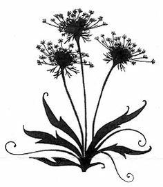 Queen Anne's Lace tattoo.