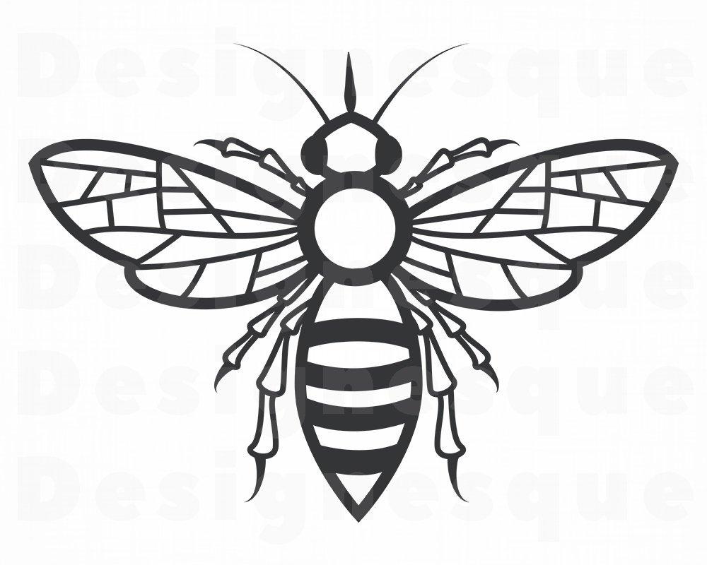 Queen Bee Vector at GetDrawings.com.