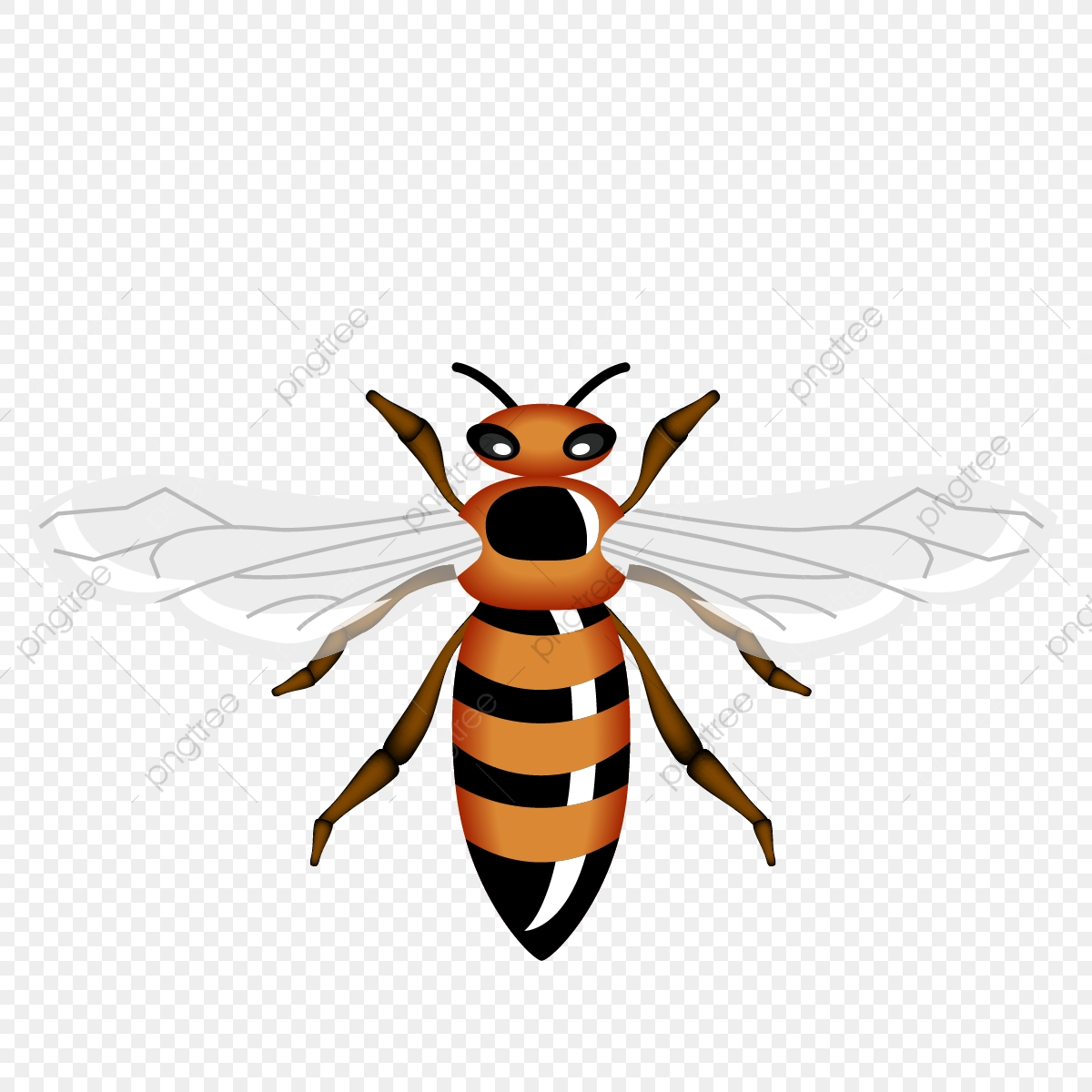 queen Bee, Png, Bee, Queen PNG and Vector with Transparent.
