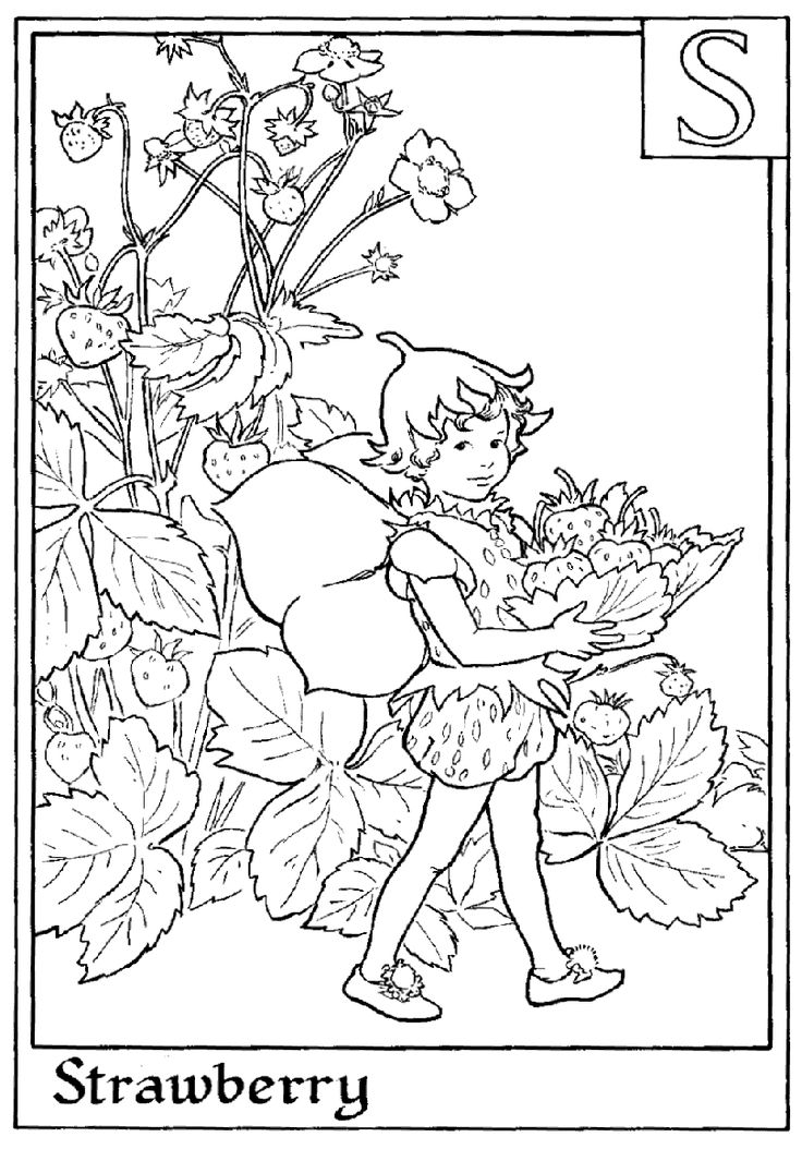 1000+ ideas about Fairy Coloring Pages on Pinterest.