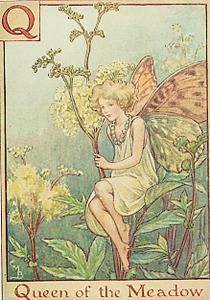 24 Best images about Flower Fairies on Pinterest.