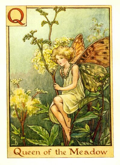 1000+ images about BLANKS / FAIRIES on Pinterest.