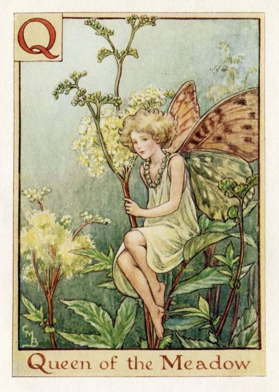 301 Best images about Flower Fairies on Pinterest.