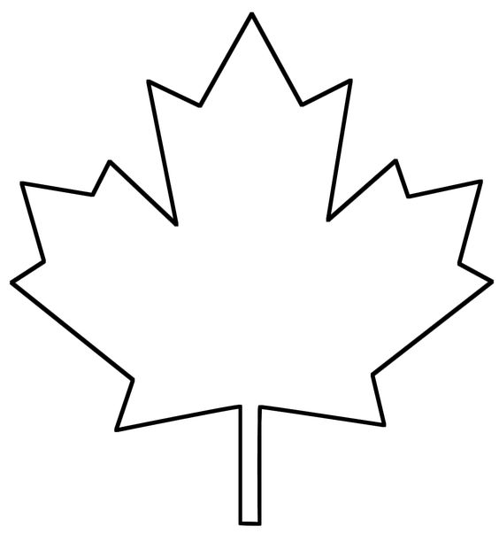 maple leaf template.