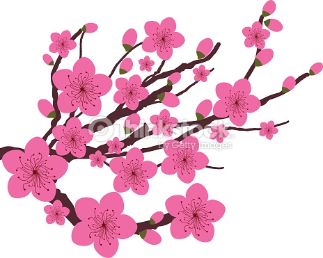 Japanese Plum Blossom Vector Art.