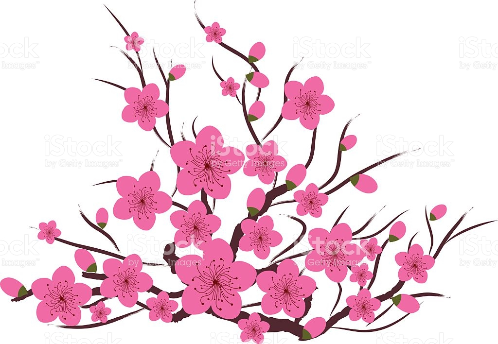 Japanese Plum Blossom stock vector art 496829738.