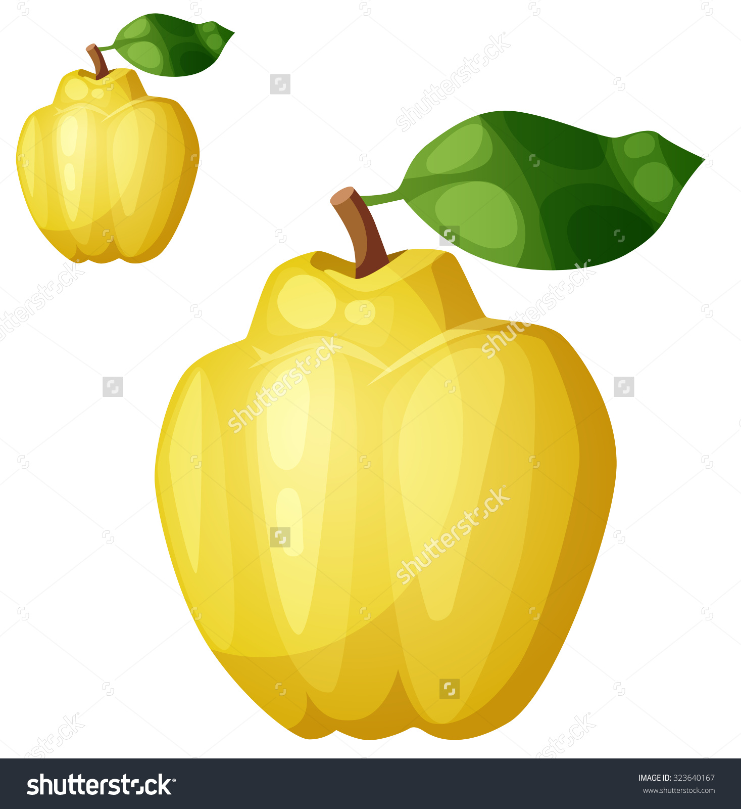 Quince Fruit Cartoon Vector Icon Isolated Stock Vector 323640167.