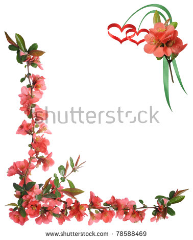 Vector Floral Frame Tulips Leaves Red Stock Vector 425952817.