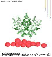 Quinine Clipart Illustrations. 20 quinine clip art vector EPS.