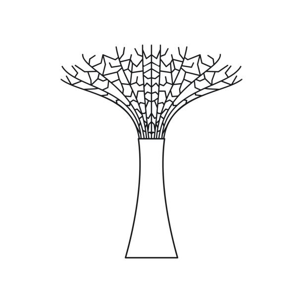 Quiver Tree Clip Art, Vector Images & Illustrations.