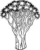 Clip Art of , monkey puzzle, tree, varieties, u19107227.