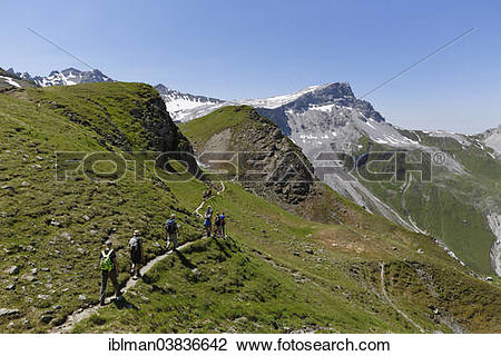 """Stock Photo of """"Hikers on a smugglers' trail, Mt Ratschenfluh."""