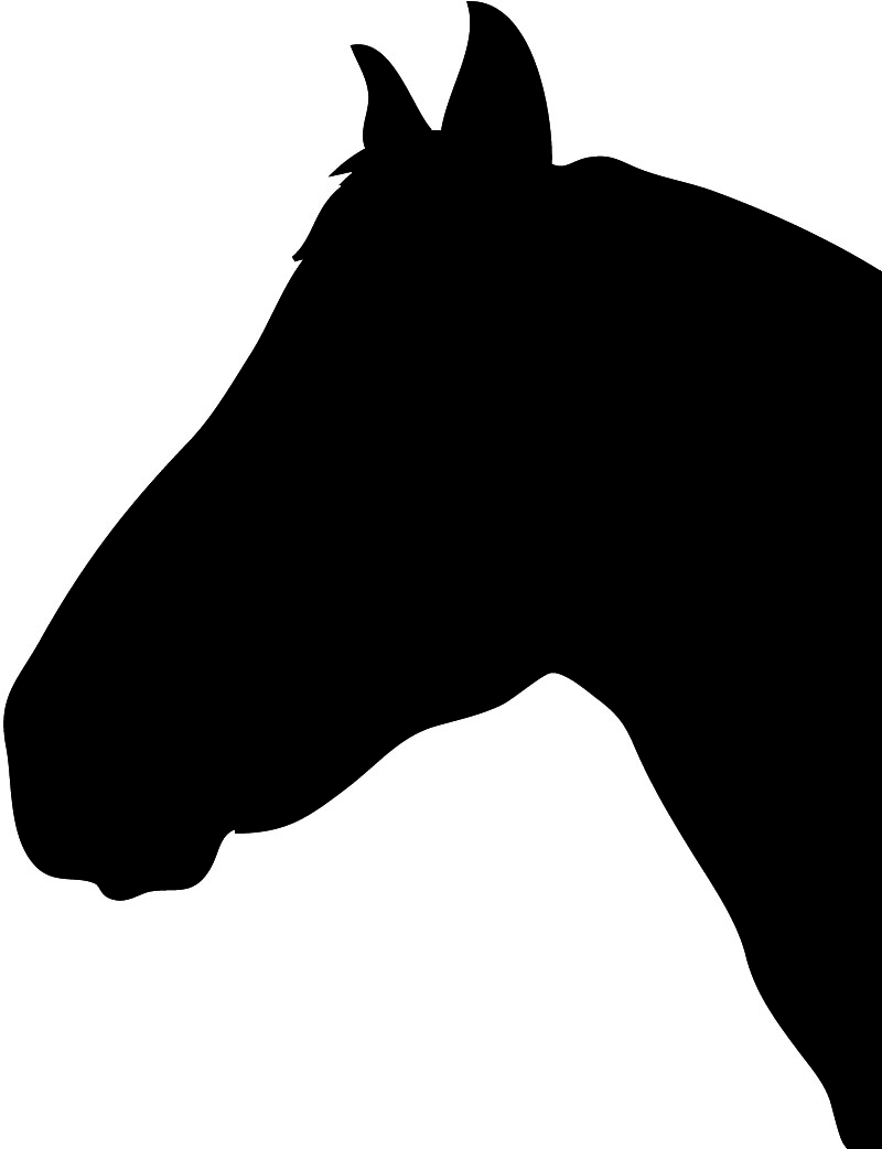 horse Silhouette by Roby Marelly.