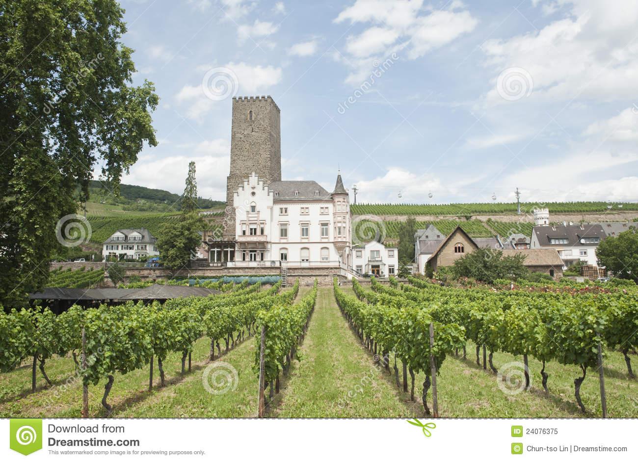 Rudesheim Castle With Beautiful Vineyard Scenery. Royalty Free.